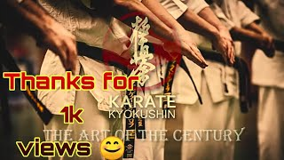 Gambar cover Invincible dynamic karate academy