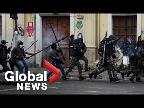 Ecuador protests: Anti-riot police face off with protesters in streets of Quito