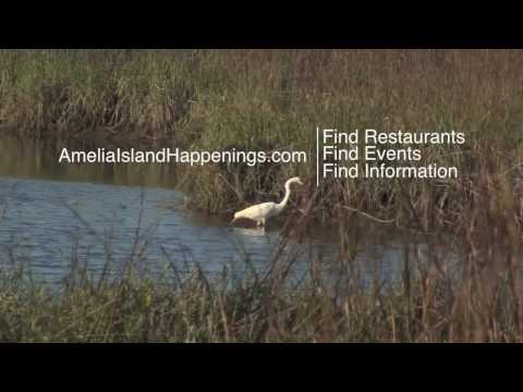 Fernandina Beach Florida Amelia Island Happenings