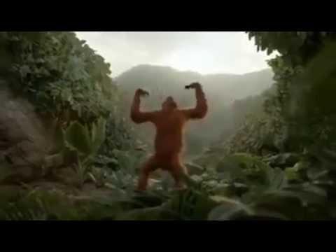 Abi to party shuro hoi hai monkey dance
