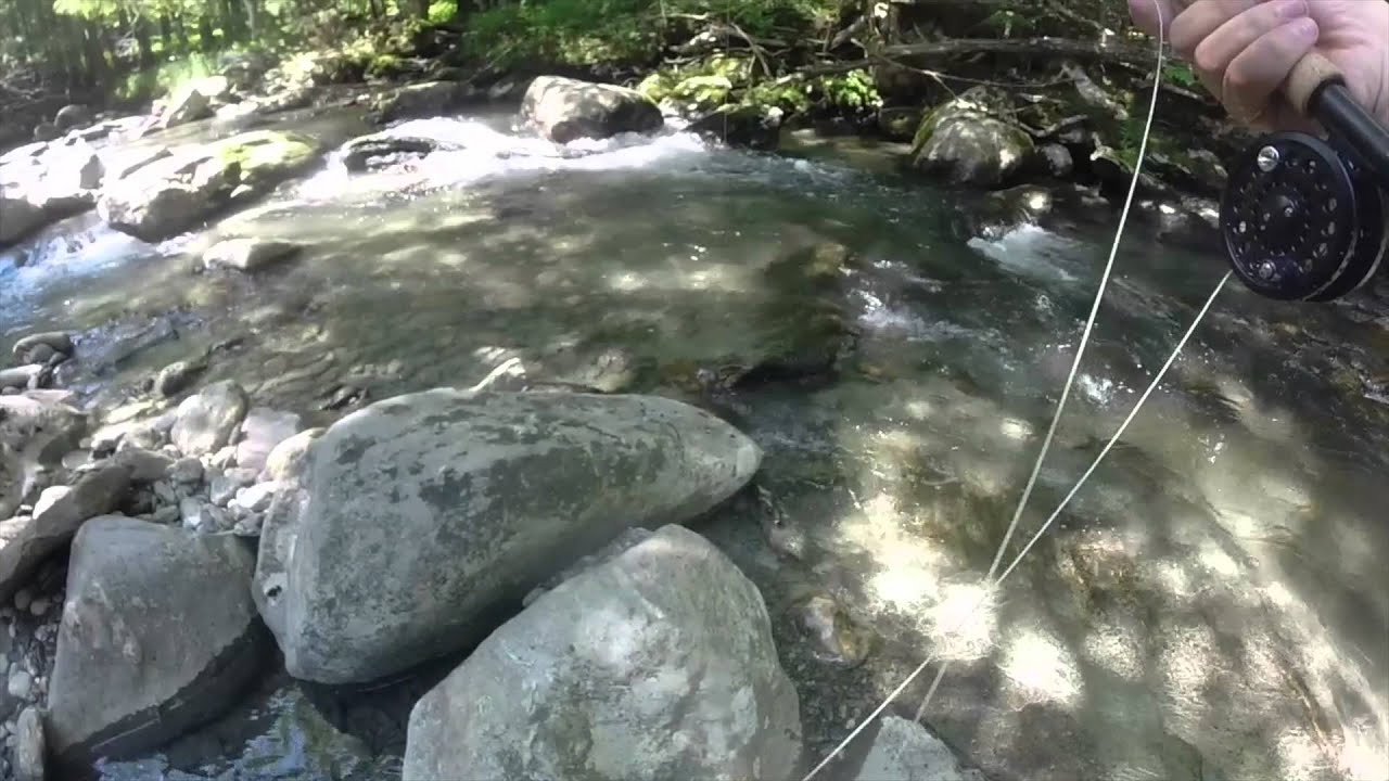 Fly fishing for trout vt youtube for Fishing license vt