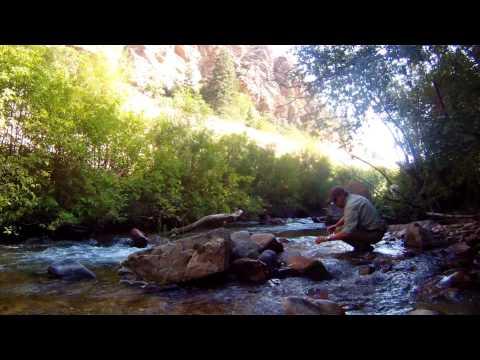 Fly Fishing an August Creek, Utah 2014