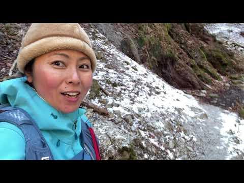森歩き日記 Vol.16 雪の森を歩く