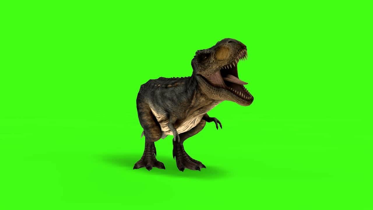 Free 3d Tiger Wallpaper T Rex Greenscreen And C4d Project Download Link Youtube