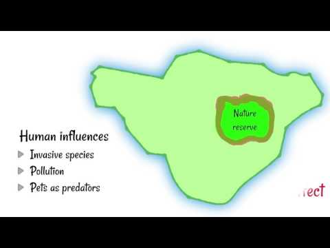 Shape of Nature Reserves