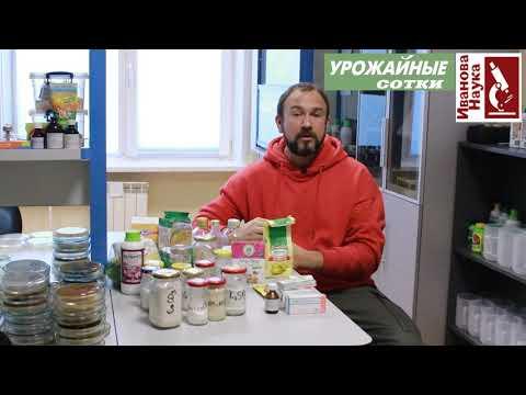 Вопрос: Как приготовить питательный гель для саженцев?