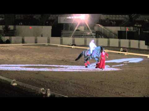Julio Mendoza 2011 - Dancing Horse Challenge