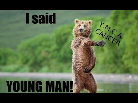 hqdefault y m c a cancer memes youtube