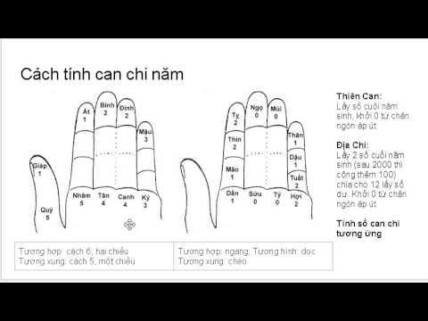 Hướng dẫn xem niên mệnh thông qua 5 ngón tay trái