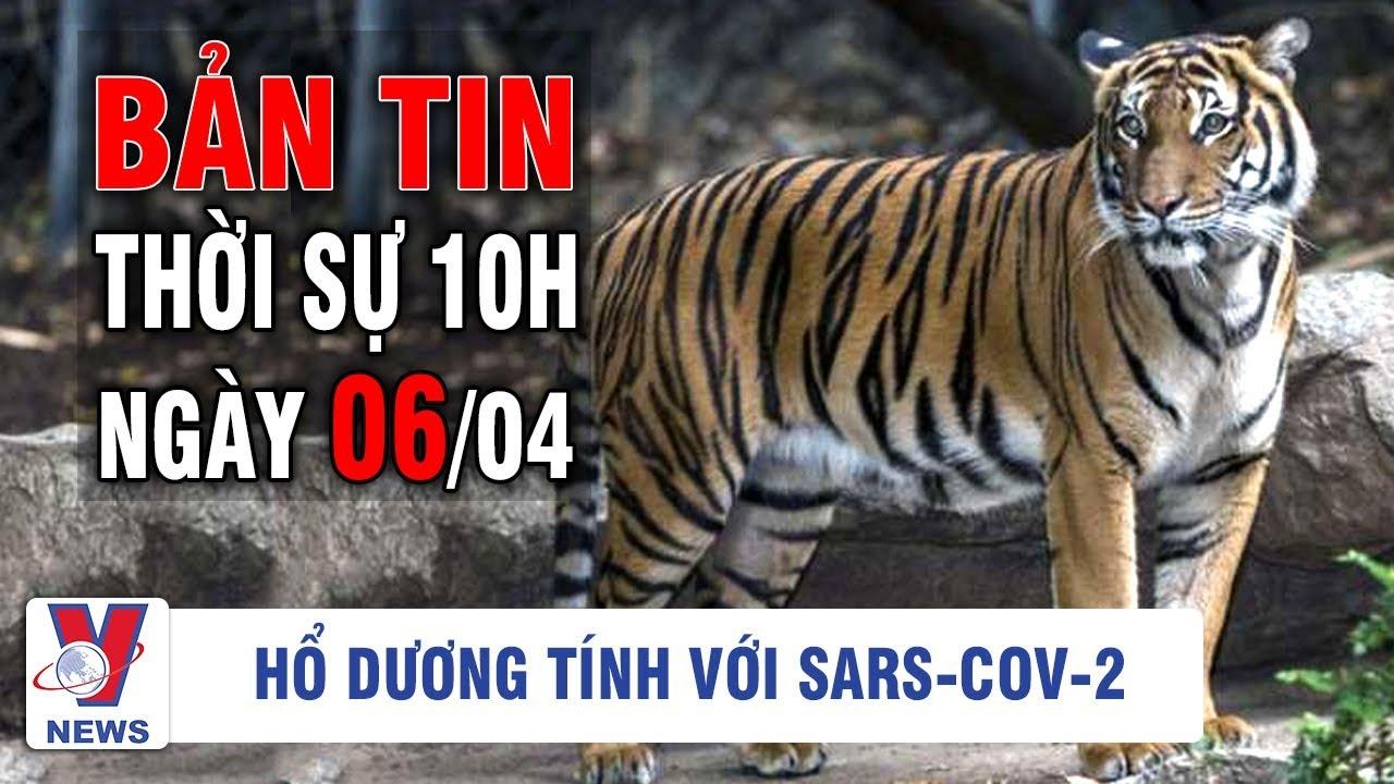 Bản tin thời sự quốc tế 10h ngày 06/04 | Hổ vườn thú New York dương tính với Sars – Cov- 2