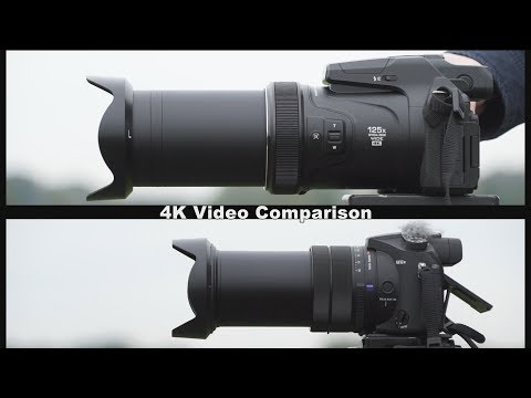 Nikon P1000 vs Sony RX10 IV - Battle of the Superzooms