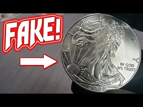 FAKE 2020 Silver