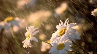 Przyjdz jak deszcz