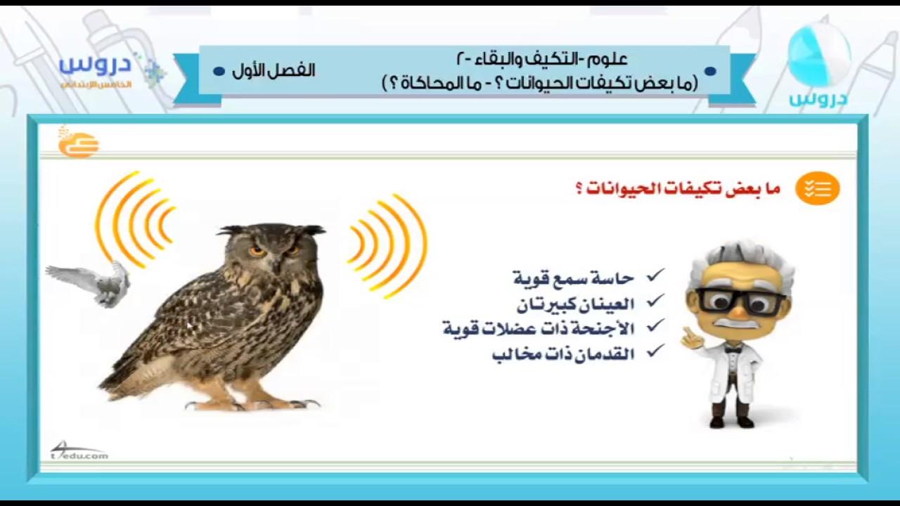 الخامس الابتدائي الفصل الدراسي الأول 1438 علوم التكيف والبقاء مابعض تكيفات الحيوانات 1 Youtube