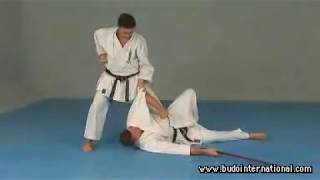 Uechi-Ryu Karate by Gustavo Gondra