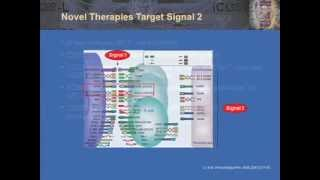 T Cell Biology and Therapeutic Targeting in Organ Transplantation