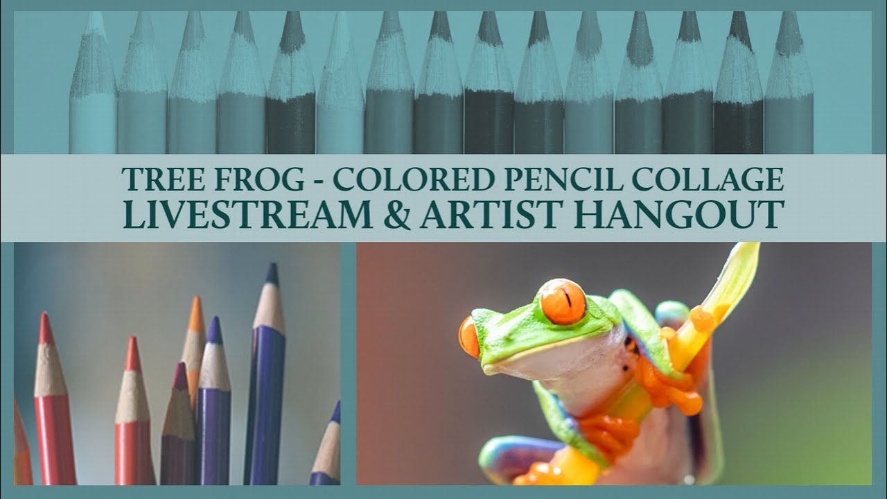 Tree Frog in Colored Pencil Live & Artist Hangout