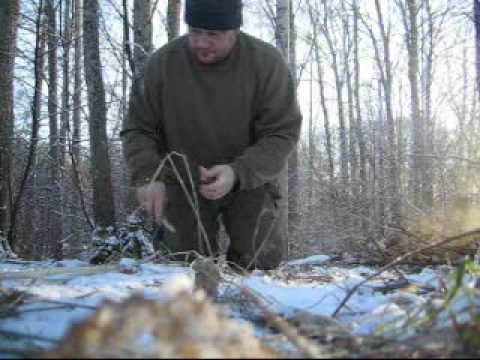bushcraft bowdrill + making a self bow ( bush living skill )