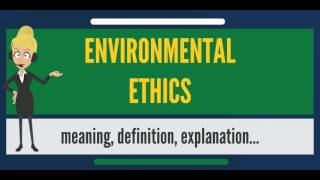 What is ENVIRONMENTAL ETHICS? What does ENVIRONMENTAL ETHICS mean? ENVIRONMENTAL ETHICS meaning