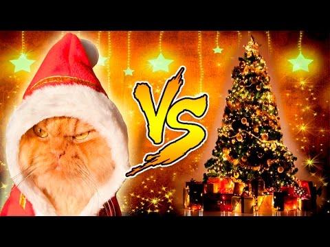 Смешные Кошки и Новогодние Елки Кошки против Новогодних Елок