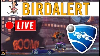 ROCKET LEAGUE - Ranked gameplay, chilling | Birdalert [PC] (CHILL, CHAT!)