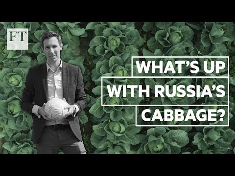 What cabbage inflation says about the Russian economy | FT