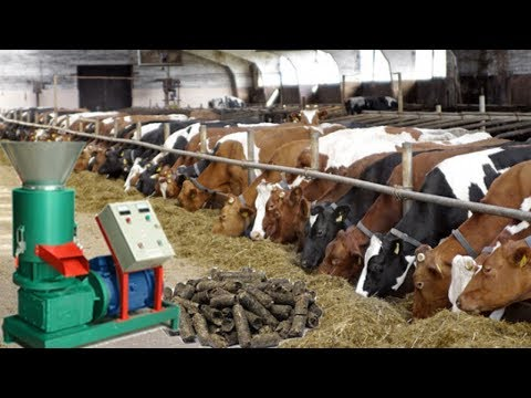 Cattle feed making Machine-Earn upto Rs.1,00,000/- per month from home : Whatsapp On -9423368301