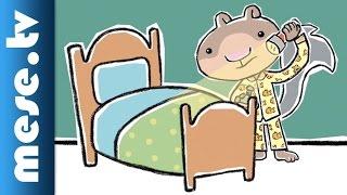 Cidrimókus jótanácsai – Trükk a jó alvásért (mese, bolondos tanácsok) | MESE TV