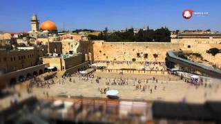 Центр реабилитации алкоголизма и наркомании в Израиле «Феникс»(, 2015-11-23T10:16:16.000Z)
