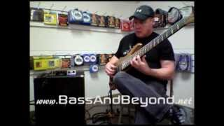 Bergantino NV115 Bass Guitar Cabinet Review BassAndBeyond.net