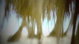 Доминикана свадьба на берегу моря Юбилей!