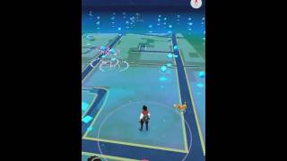 Aplikasi koplayer emulator android buat versi main pokemon go..