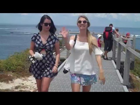 Interview | How to Get to Rottnest Island with Rottnest Fast Ferries
