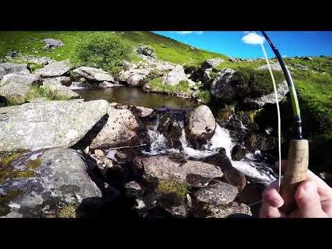 Pysgota Pluen Eryri Mehefin 2017 Fly Fishing in Snowdonia June 2017