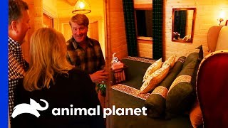 This Treehouse Has A Secret Bedroom Behind A Bookcase! | Treehouse Masters
