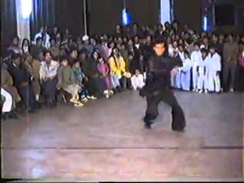 Ngũ Hình Tổng Hợp Sifu Lê Hoài Nam 1993 - Ngô gia Vĩnh Xuân quyền