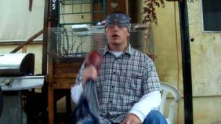 campo rez bird singer