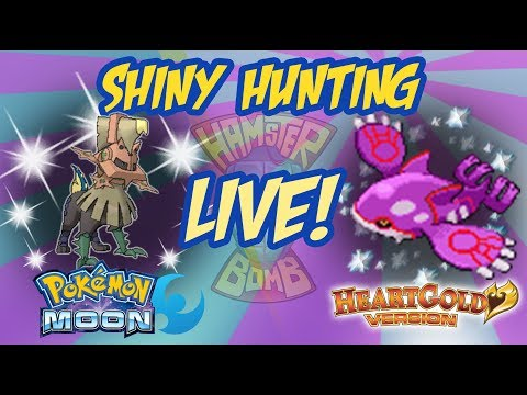 HamsterBomb LIVE Shiny Hunting Type: Null and Kyogre!
