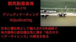 【競馬】アジュディケーティング Adjudicating【No 278】