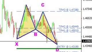 Harmonic Pattern Scanner for the Forex Market