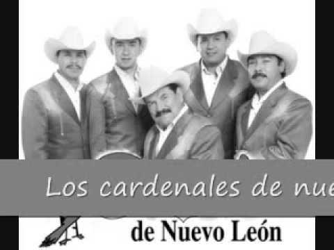 """Los Cardenales De Nuevo Leon """" Mi Complice """""""