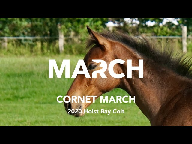 Cornet March Sold