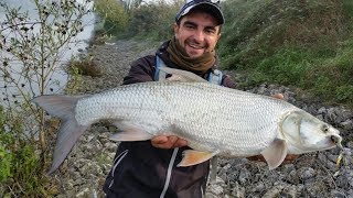 Pesca a Spinning,mix di clip incompleti 2017.(Spin fishing mix)