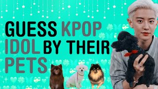 KPOP GAMES | GUESS KPOP IDOL BY THEIR PETS
