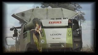 Żniwa Kukurydzy 2018 z nowym nabytkiem Claas Lexion 780