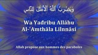 Apprendre le verset de la Lumière (Sourate 24, Verset 35) [arabe/phonétique/français]