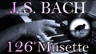 Johann Sebastian BACH: Musette in D major, BWV Anh. 126