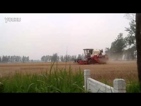 Foton lovol GF40 combine in China henan province