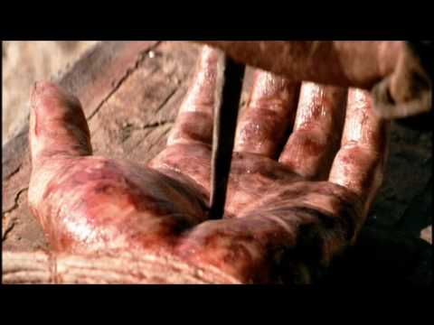 Nail Pierced Hand - The Blood - Bridal Price - Holy Communion (Bond Servant Hal Ngoy 05-19-2016)