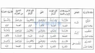 Madinah Arabic Book 3/3 Lesson 1/17